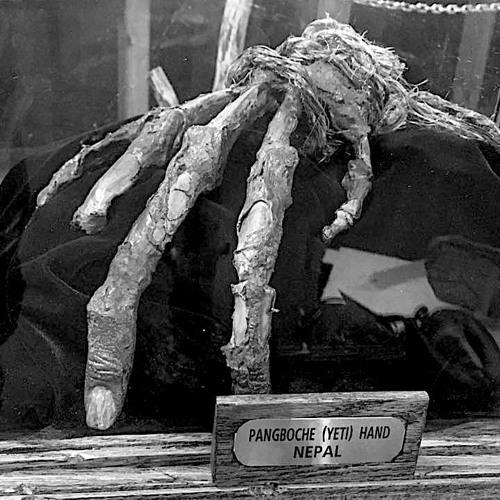 Pangboche Hand
