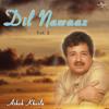 Jab Bhi Phool Khile Gulshan Mein (Album Version)