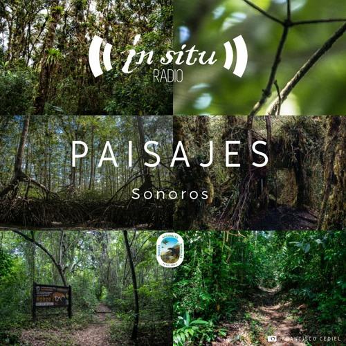 Paisajes Sonoros de los Parques Nacionales Naturales de Colombia