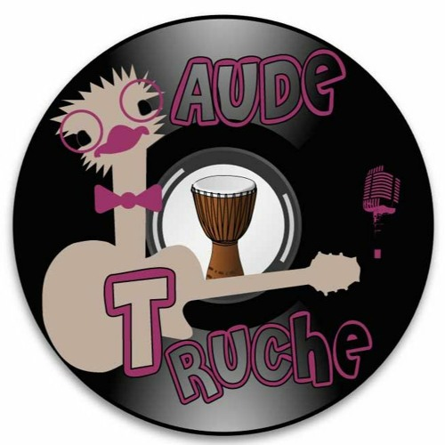 """Groupe de Musique """"Aude Truche"""" Musiciens, Vendée, Pays de la loire"""