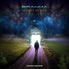Brahma - Secret Of Life  (Originalmix)