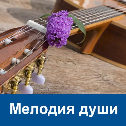 Melodia Duschi
