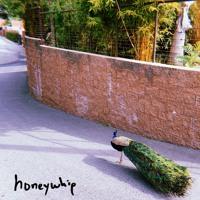 honeywhip - feels good to laugh