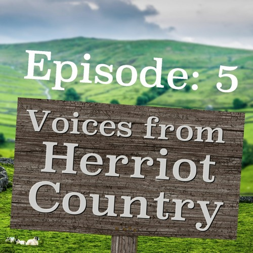 Voices from Herriot Country - Episode 5 - The Carpet Man