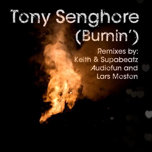 Burnin' (Audiofun Remix)