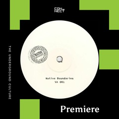 PREMIERE: Lucid Distraction - In My Head [Native Boundaries]