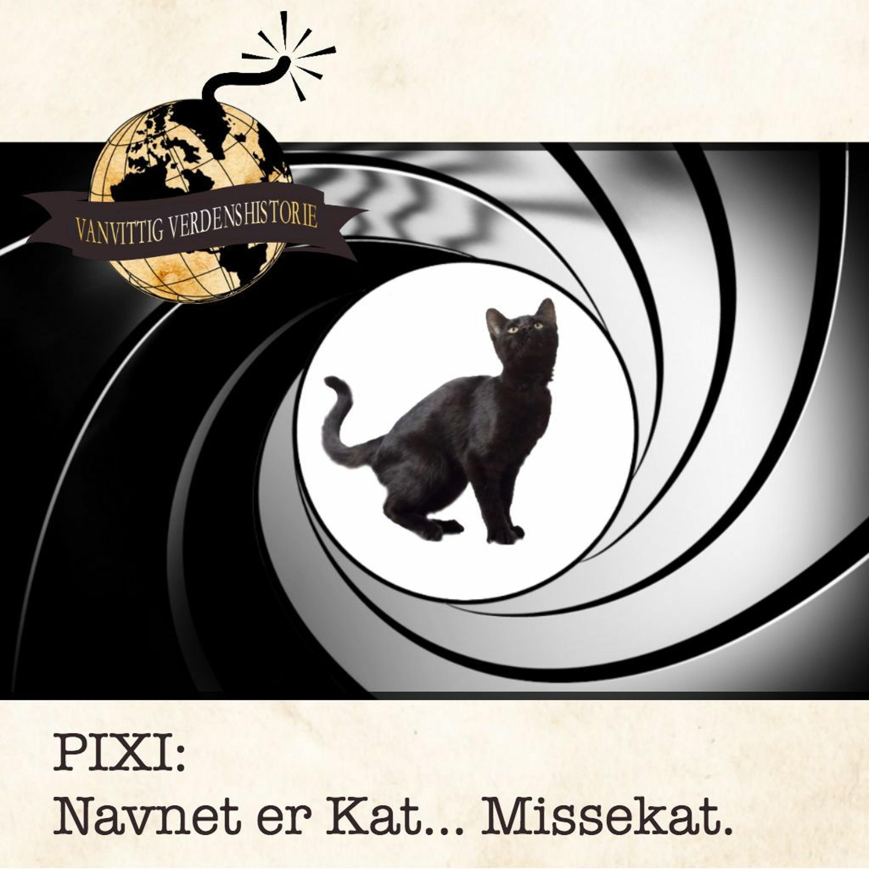 PIXI: Navnet er Kat... Missekat.
