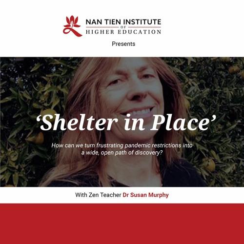'Shelter in Place' with Zen Teacher Dr Susan Murphy