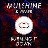 Burning It Down