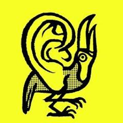 Les Oreilles Libres - Carte Blanche à David Fenech