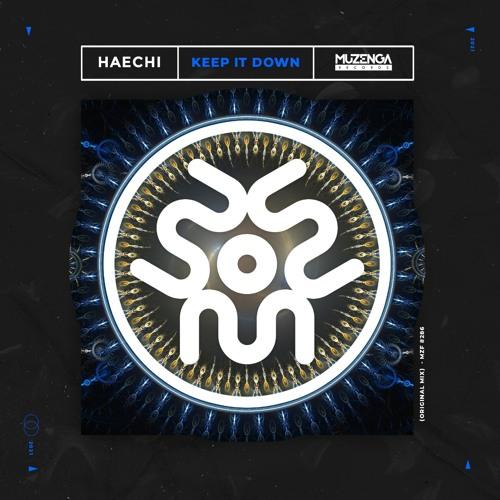 Haechi - Keep It Down (Original Mix)