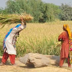 COVID-19 : œuvrer pour l'égalité des sexes au Pakistan