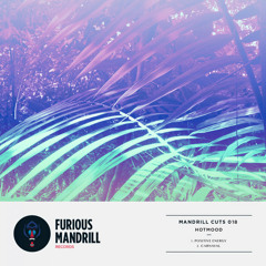 PREMIERE: Hotmood - Positive Energy [Furious Mandrill Records]