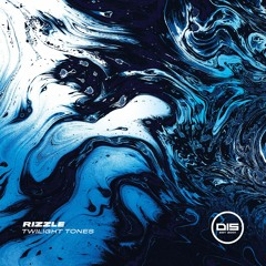 Rizzle 'Duality' [Dispatch Recordings]