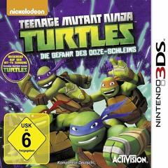Teenage Mutant Ninja Turtles (808paymels x cxldie)