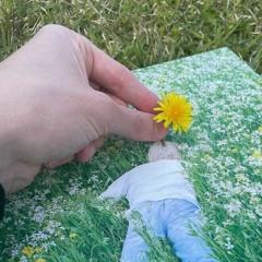 blossom_cover.m4a
