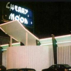 CHERRY MOON - YVES DERUYTER & FRANKY KLOECK 14.09.1996 (topset)