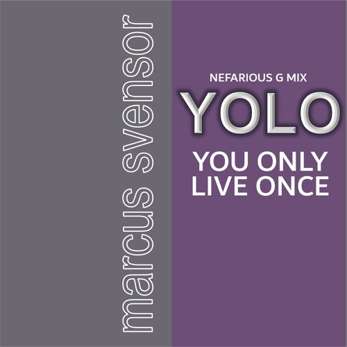 YOLO, you only live once - Nefarious G Mix