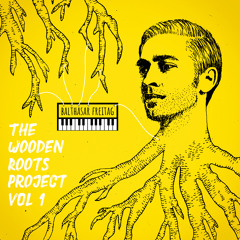 SOLARIS - the wooden roots project vol 1 - balthasar freitag