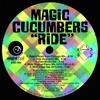 Ride (Tribal Sex Mix 2015 Edit)