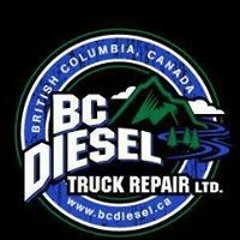 BOSCH Diesel Fuel injectors