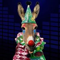 Clown Donkey Hall-Of-Shame 12.22.2017 - Judge Roy Moore