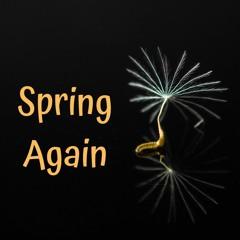 Spring Again (Val Akey & Szabolcs Kontra collab)