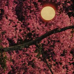 jaz - Heaven (Trees 6)