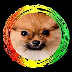 Junglist Puppy