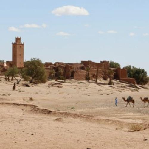 La adaptación al cambio climático en la región MENA: prácticas y lagunas (VO)