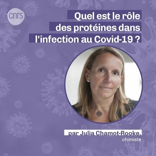 Quel rôle les protéines jouent-elles dans l'infection au Covid-19 ? par Julia Chamot-Rooke
