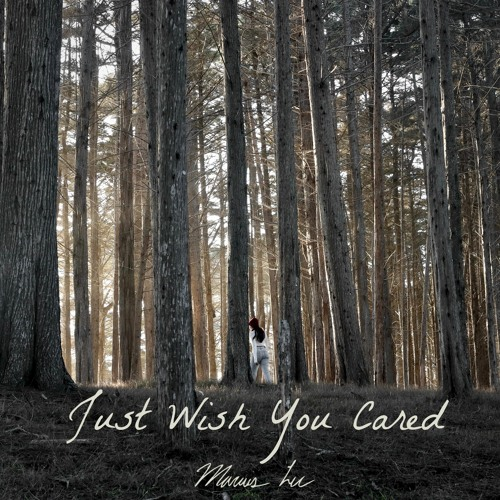 Just Wish You Cared