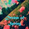 Dream of Spring - NIRET 145 BPM