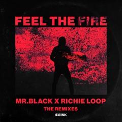 MR.BLACK & Richie Loop - Feel The Fire (Futuristic Polar Bears & Jerry Davila Remix)