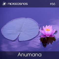 Anumana — Microcosmos Chillout & Ambient Podcast 066