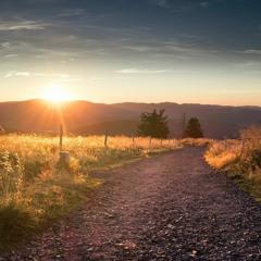 The Path Of Destiny