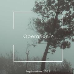 Pokrovsky - Operation Y (existenz)