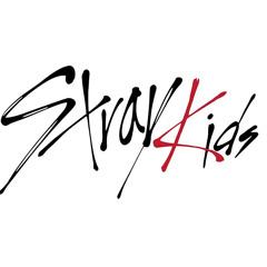 Stray Kids Remix