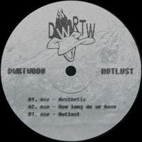 PREMIERE: nse - How Long Do We Have (Original Mix) [DWRTW Records]