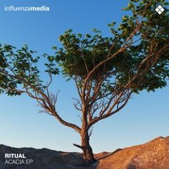 Ritual & Alpha Rhythm - Bliss