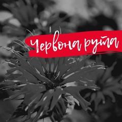 Червона рута (cover version)