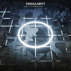 FLY & Mirror Maze - Singularity