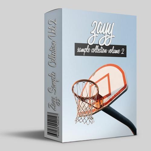 Zayy Sample Collection Vol.2