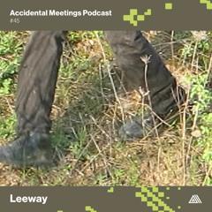 AM Podcast #45 - Leeway