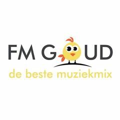 FM GOUD - DEMO - Custom Intro's