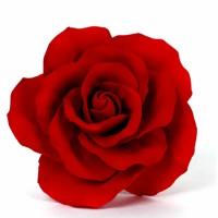 Dean - The Rose ( TECHNO / POP )