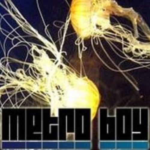 DJ Denise 'New Frequency (Metro Boy Remix)'