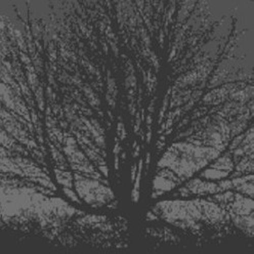 mrunderwood's avatar