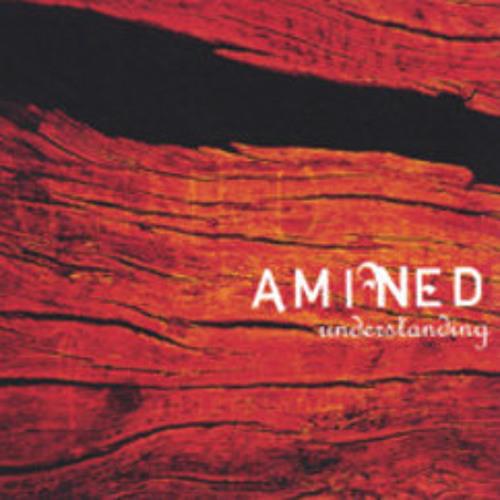 Amine-D's avatar