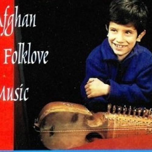 Habibullah M. Wardak's avatar
